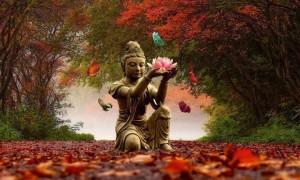 Yoga é uma filosofia de vida que nos traz muito mais equilíbrio, realmente…