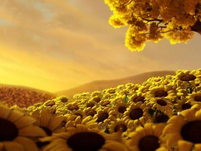 Parte 4 – Câncer: Quais são os Pilares para construir sua estratégia em direção à CURA:    4) Estilo de vida